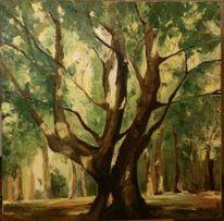 Licht, Wald, Baum, Malerei