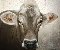 Acrylmalerei, Kuh, Tiroler grauvieh, Blattmetall