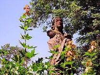Baum, Natur, Statue, Fotografie