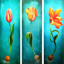 Triologie, Blüte, Tulpen, Zwiebeln