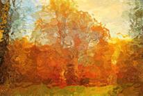 Baum, Herbst, Atmosphäre, Digital