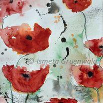 Roter mohn, Mohnblüten, Aquarellmalerei, Mohnblumen