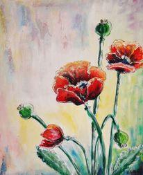 Mohn, Rot, Blüte, Malerei