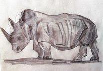 Nashorn, Bleistiftzeichnung, Zeichnung, Zeichnungen