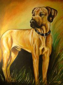 Gemälde, Hund, Hundeportrait, Ridgeback