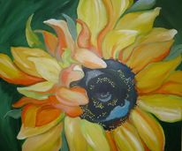 Sonnenblumen, Sommer, Blumen, Natur