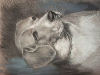 Illustration, Tierportrait, Pastellmalerei, Hund