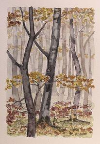 Laub, Baum, Licht, Natur