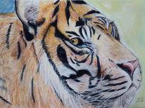 Tiger, Malerei, Tiere