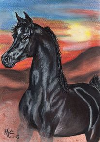 Pferde, Haflinger, Pastellmalerei, Portrait