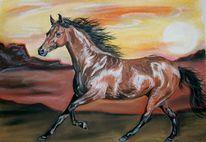 Pferdezeichnung, Pastellmalerei, Wolf, Araber