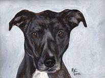 Pastellmalerei, Hundeportrait, Portrait, Hundezeichnung