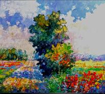Modern, Feldblumen, Garten, Mohnwiese
