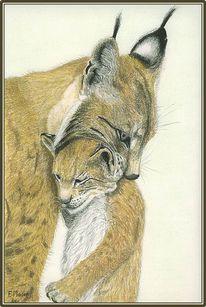 Wild, Luchs, Malerei