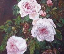 Pflanzen, Malerei, Blumen, Rose