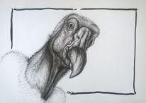 Portrait, Neugier, Schwarz weiß, Kopf