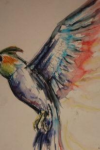 Aquarellmalerei, Vogel, Tiere, Bunt