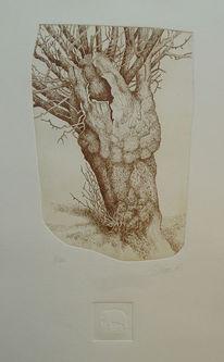 Alter baum, Realismus, Radierung, Baum