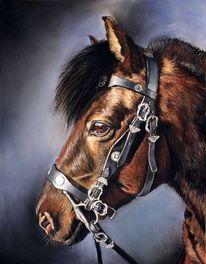 Malerei, Pony