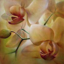 Orchidee, Blumen, Malerei