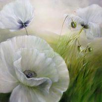 Farben, Mohn, Gemälde, Blumen