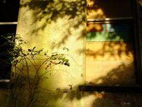 Ruine, Fenster, Lichtspiel, Fotografie