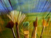 Pinsel, Landschaft, Versammlung, Fotografie