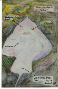 Rochen mit rahmen, Aquarell, Rahmen, Aquarellfarbe