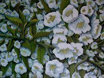 Frühling in weiss, Blüte, Weiß, Malerei