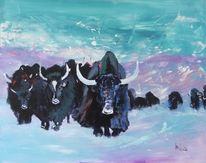 Yaks, Wildnis, Winter, Tiere