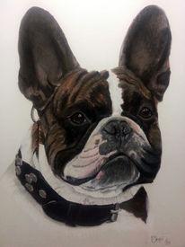 Malerei, Pastellmalerei, Bunt, Hund