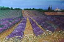Violett, Himmel, Sonnenhut, Weite