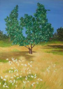 Baum, Grün, Natur, Oliv