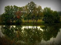 Spiegelung, See, Wasser, Fotografie