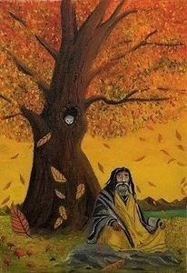 Baum, Blätter, Herbst, Guru