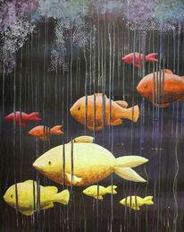 Wasser, Fisch, Gelb, Bunt