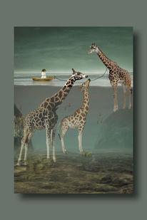 Giraffe, Frau, Mädchen, Wasser