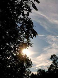 Sonne, Himmel, Baum, Wolken