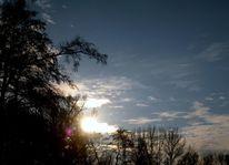 Licht, Baum, Himmel, Wolken