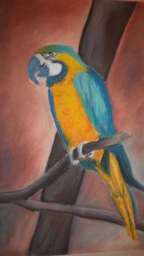 Tiere, Papagei, Vogel, Malerei