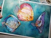 Fisch, Tiere, Aquarellmalerei, Discus