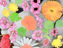 Stein, Blumen, Digitale kunst