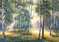 Grün, Birken, Gelb, Sommer