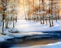 Winter, Schnee, Wald, Sonne