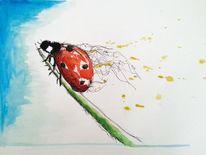 Natur, Käfer, Tiere, Wasserfarbe