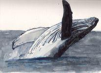 Meer, Wal, Tiere, Lebewesen