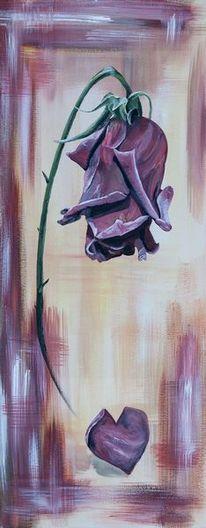 Blumen, Rose, Rosenblatt, Herz