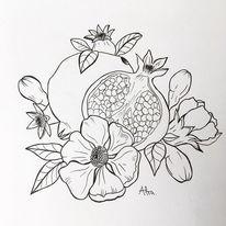 Granatapfelfrucht, Tuschmalerei, Blüte, Zeichnungen