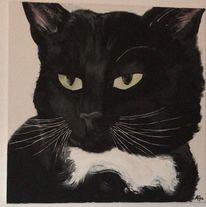 Acrylmalerei, Tierportrait, Katze, Malerei