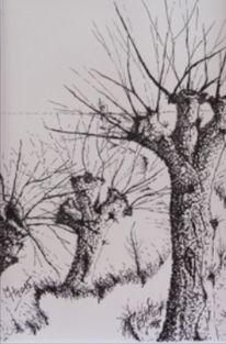 Weiden, Fluss, Tuschmalerei, Zeichnungen
